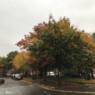 Liverpool Autumn