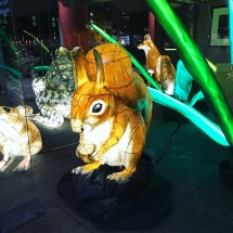 Animal Lanterns Albert Dock