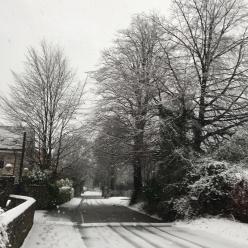 Haslemere Surrey Snow